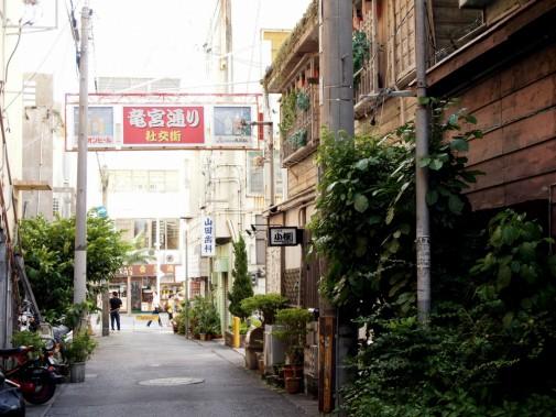 沖縄の裏道