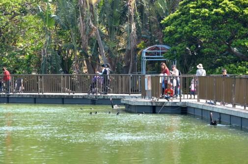 動物園内の写真