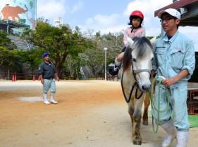 子どもが馬に乗っている様子