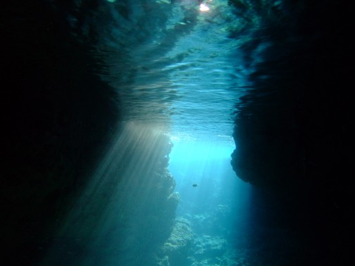 沖縄の海の海中
