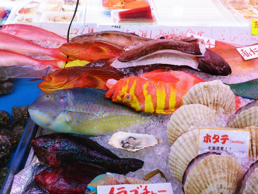 沖縄の鮮やかな色の鮮魚いろいろ