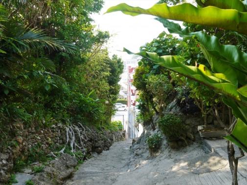 自然あふれる石畳道