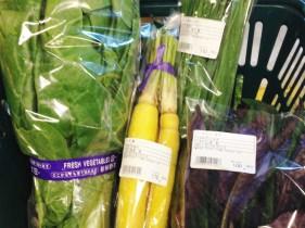 島野菜たち