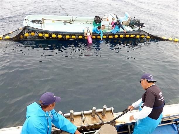 網を引き始める漁師たち