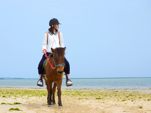 浜辺の乗馬
