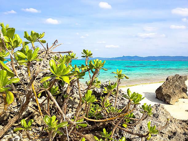 石垣秘密のビーチ