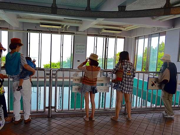 海洋博公園内の水族館内