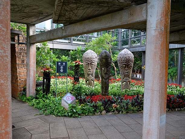 熱帯果樹などの植物たち