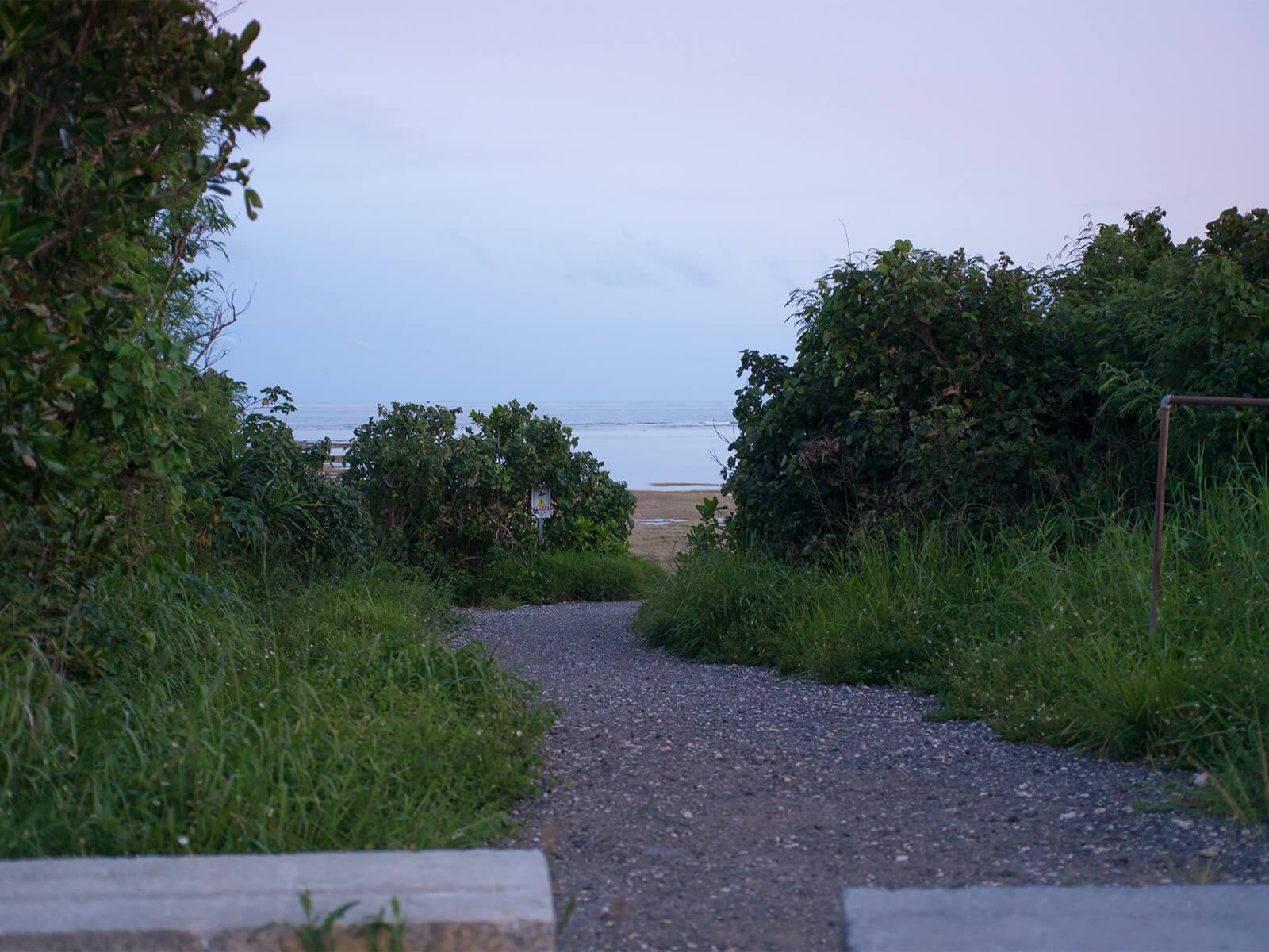 多田浜海岸へ続く道