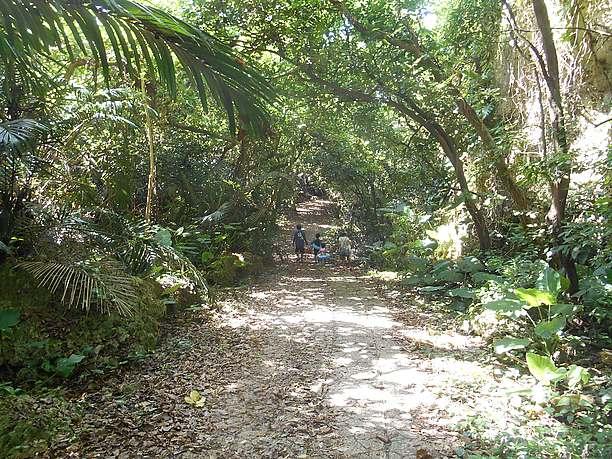 タコ公園下ビーチへの遊歩道