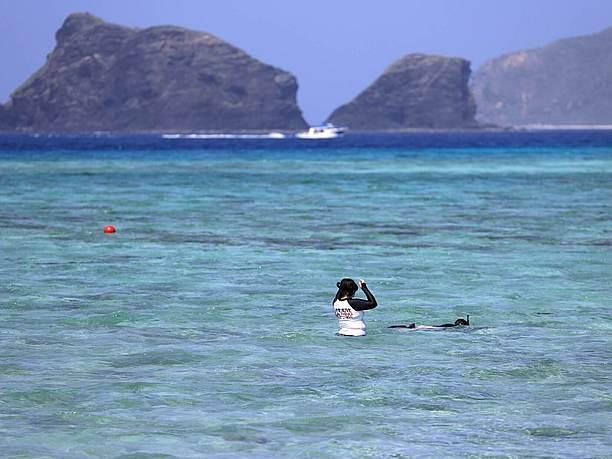 抜群の透明度で、 ウミガメが住み着くほどの美しい水質