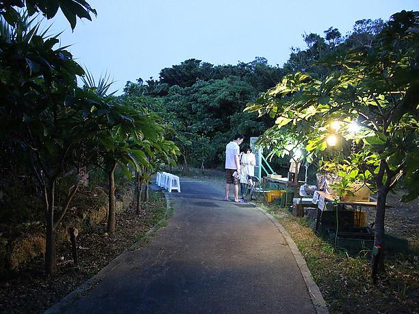 宮古島添道サガリバナ群生地の遊歩道