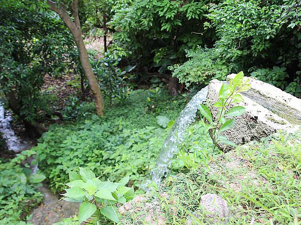 池から綺麗な水が流れ落ちる