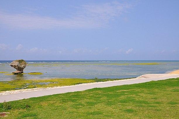 ナチュラルで素朴な天然ロングビーチ