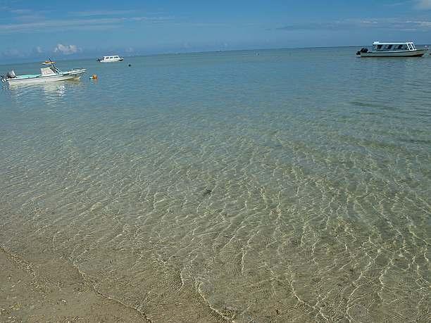 本島南部で人気の自然なビーチ