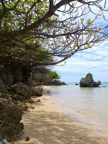浜の左サイドの風景