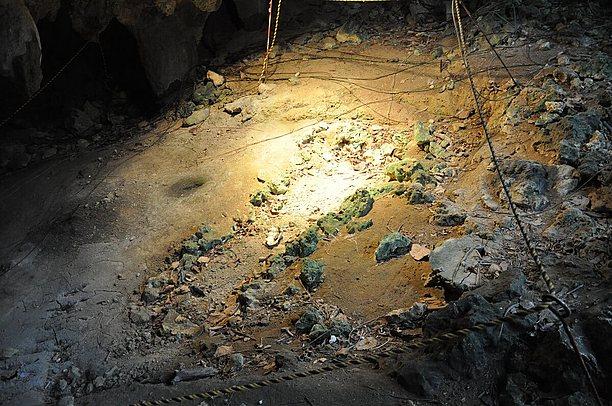 約2万年前の貝の器と人骨
