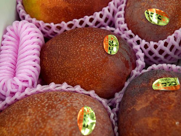 夏場のマンゴーは特においしい!