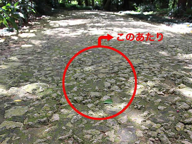 ひと際古めかしく小さな石が密集した部分が世界遺産