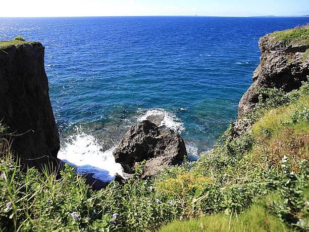 隆起珊瑚のダイナミック岩肌