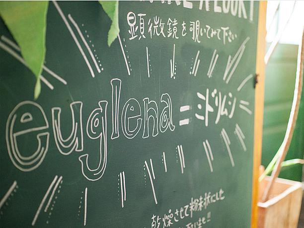 「ユーグレナ」は和名で「ミドリムシ」