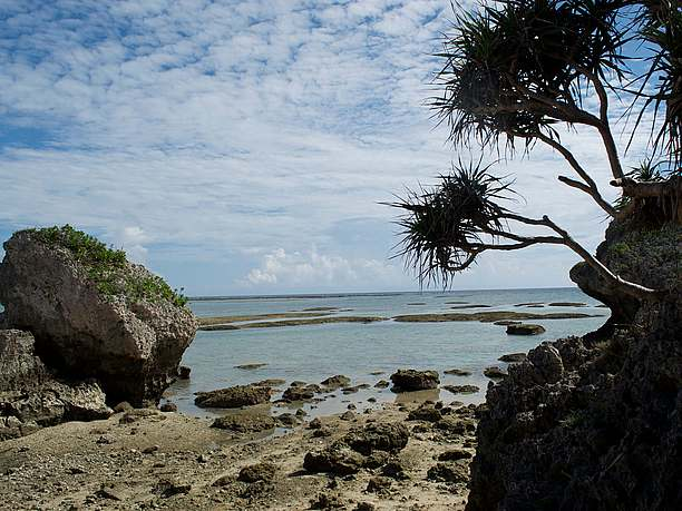 沖縄らしい絶好の撮影ポイント