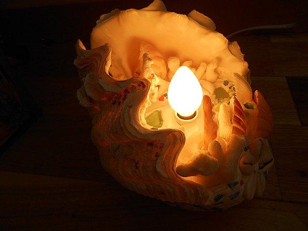 シャコ貝からこもれる光が何とも美しい