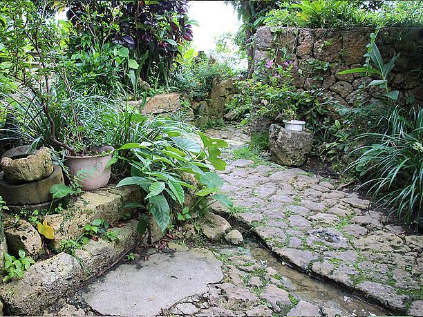 琉球石灰岩の石畳