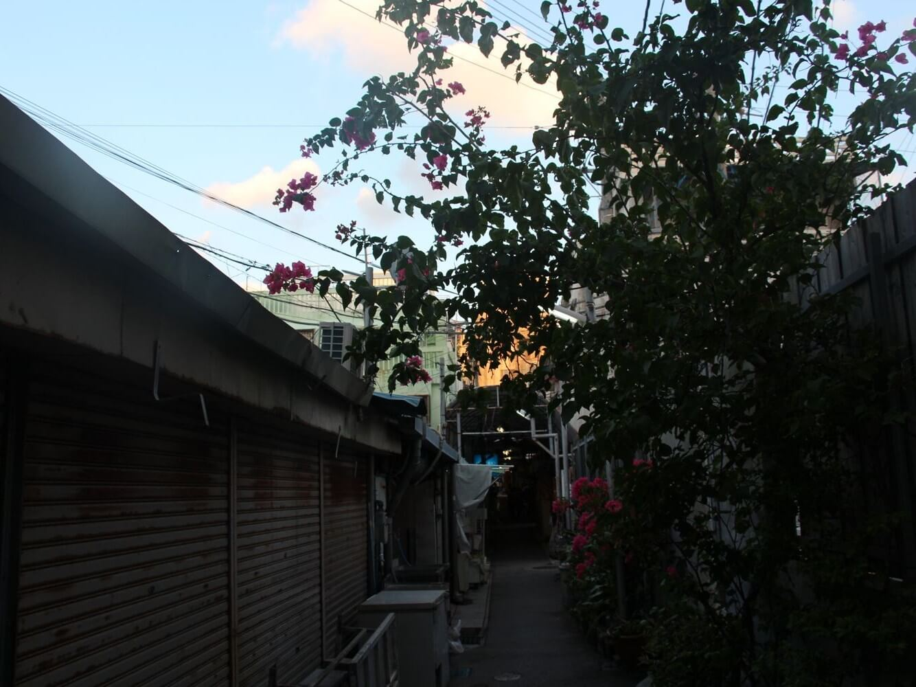 日常の風景が交錯する栄町市場