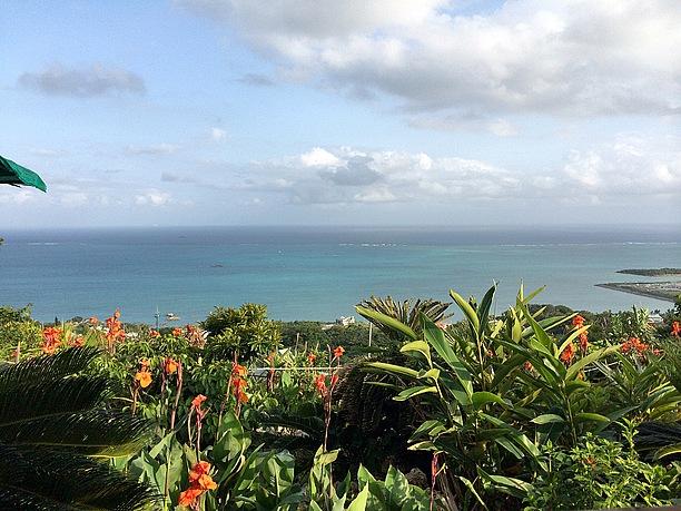 年中日焼け対策は必要不可欠な沖縄