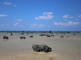 海底にあった岩