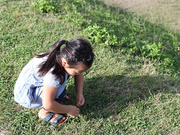 芝生の広場で遊ぶ子供