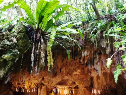 普天満宮洞穴