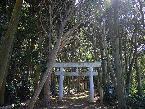 塩川御嶽の周りの大きな木々