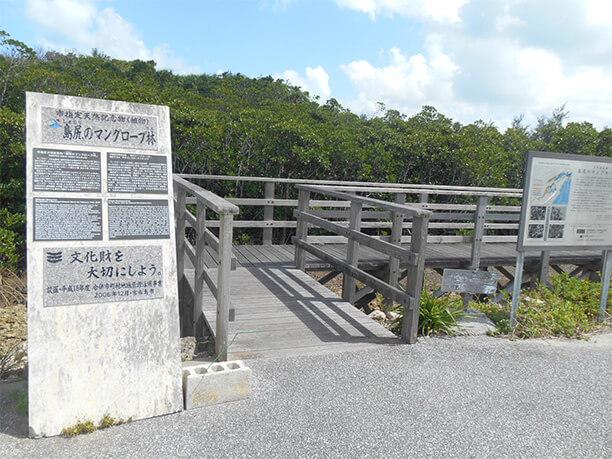 島尻マングローブ林