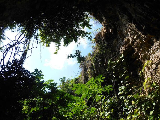 高さ15mの断崖