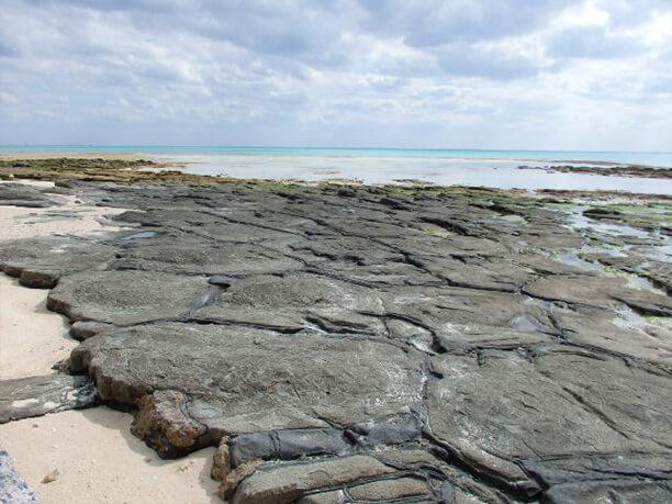 引き潮の石畳 近景