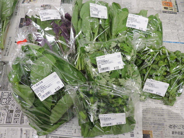 沖縄特有の島野菜
