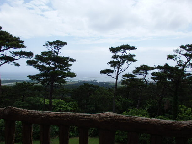 頂上で絶景が見られるすべり台