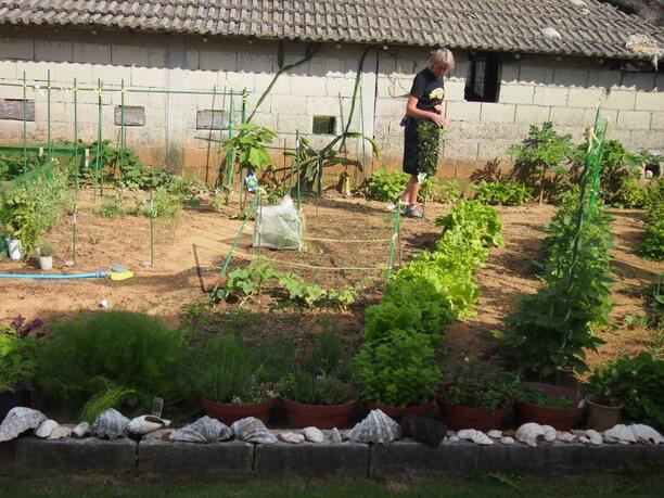 Annaさん自慢の自家菜園