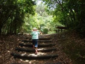 久米島の絶景が見られる公園