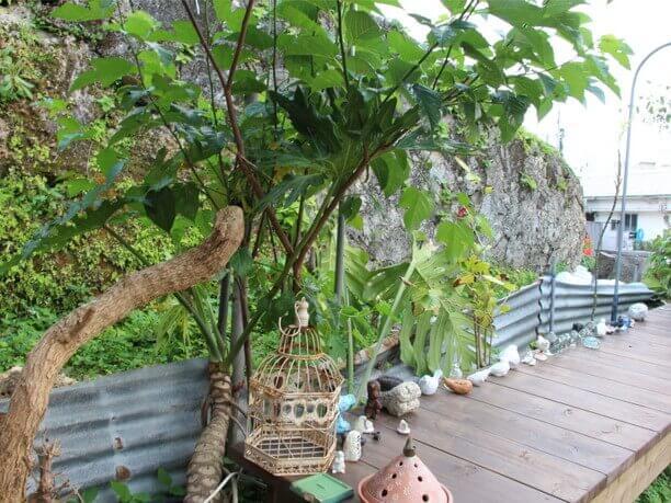 辻さんが見つけた那覇の街中の庭