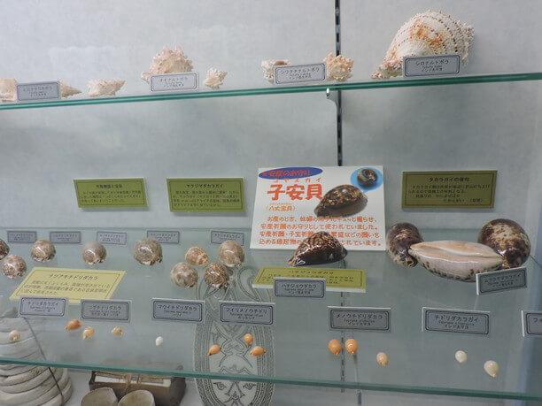 今年で開館18年の宮古島海宝館