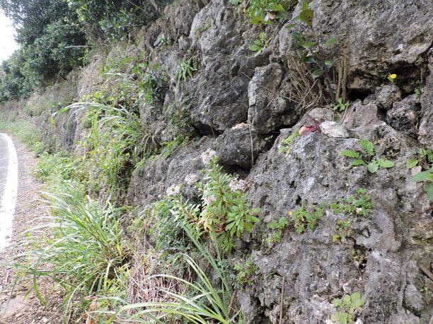 穴の開いた岩