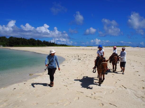 馬と浜遊び