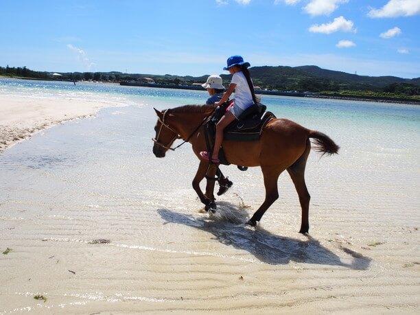 海を歩く馬