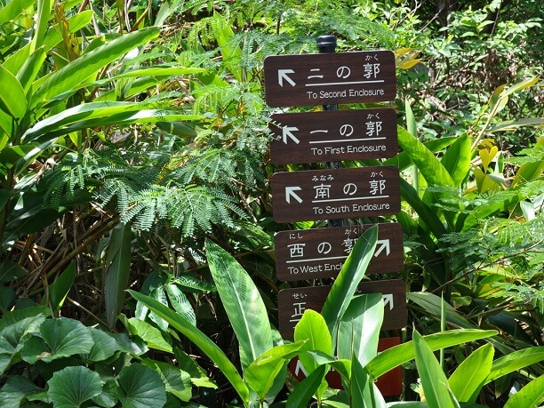 観光コース
