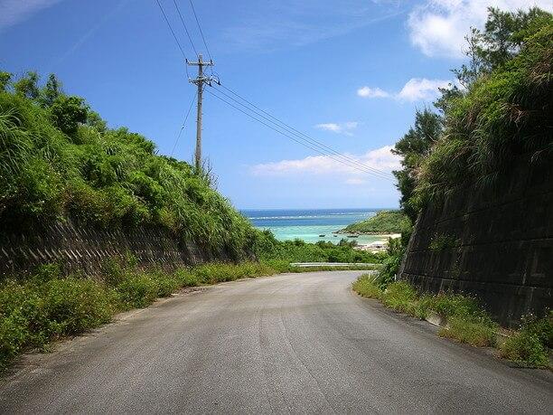海岸までの道中