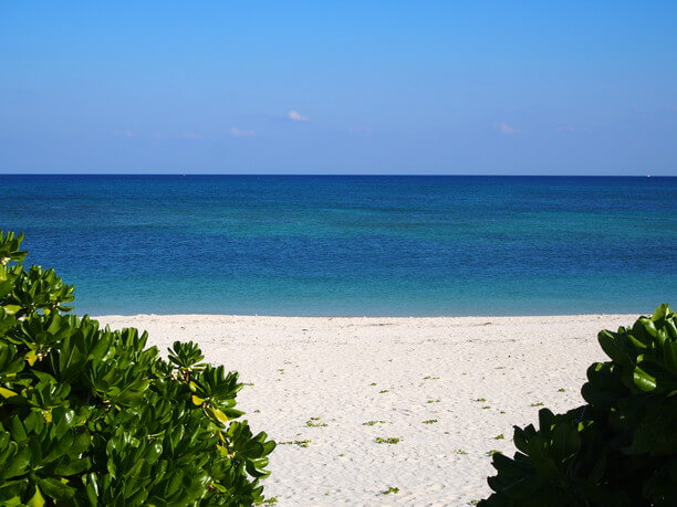 爽快なコバルトブルーの海