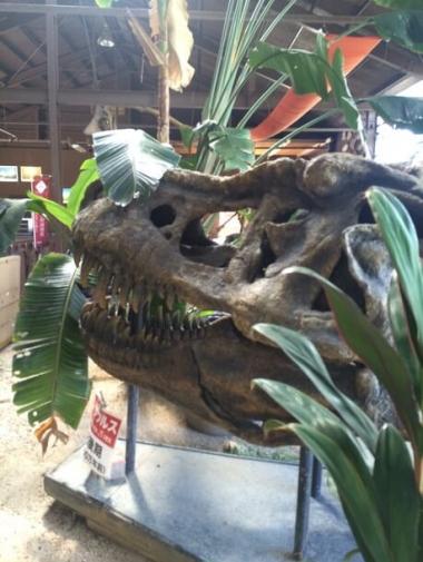 ティラノサウルスの化石